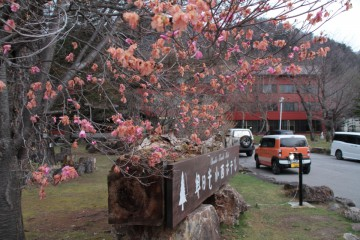 160430_konishimae